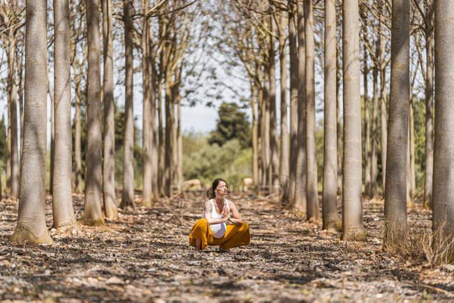 Спокійна вагітна жінка, яка практикує йогу, сидячи в позі лотоса на землі в парку. — стокове фото