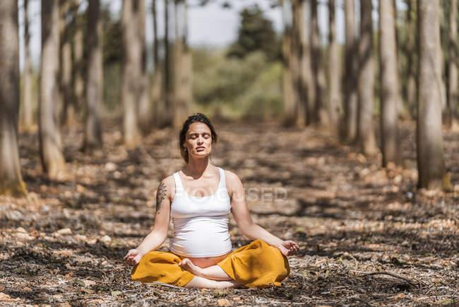 Mãe serena e serena com os olhos fechados sentados na postura padmasana e meditando na floresta — Fotografia de Stock