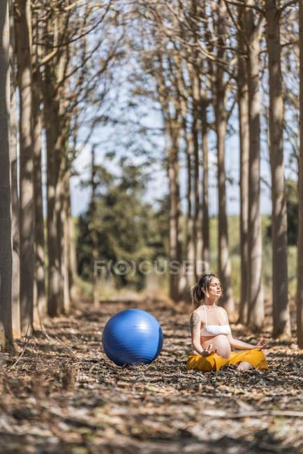 Mulher grávida adulta serena que medita com bola de ajuste azul enquanto se senta no chão entre árvores no parque — Fotografia de Stock