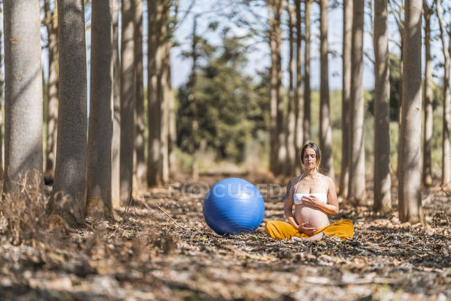 Calm pregnant lady with closed eyes touching belly while sitting and meditating beside big blue pilates fit ball in forest glade — Foto stock
