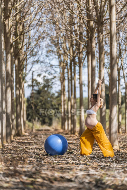 Serene adult pregnant woman training with pilates ball in park during sunny weather — Stock Photo