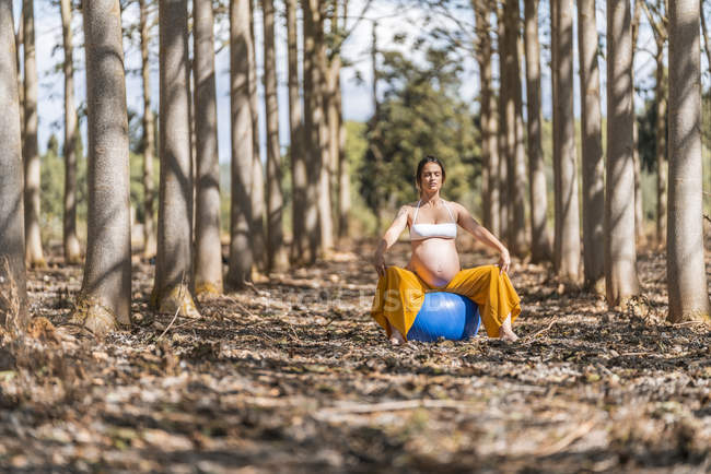 Expectant mother doing pilates exercise while sitting on big elastic blue fit ball in autumn forest glade — Stock Photo