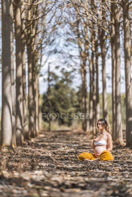 Calma mujer embarazada adulta practicando yoga mientras está sentada en pose de loto en el suelo en el parque durante el día soleado - foto de stock