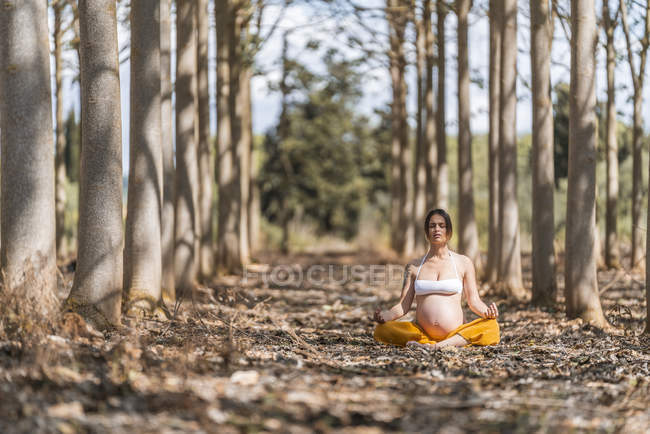 Femme enceinte adulte calme méditant tout en étant assis dans la pose lotus sur le sol dans le parc — Photo de stock