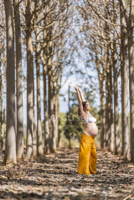 Concentrated adult expectant mother stretching arms while practicing yoga in park — Stock Photo