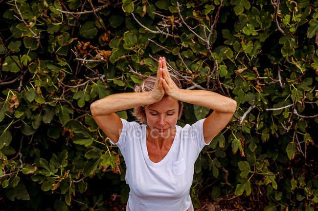 D'en haut d'une femme aux yeux fermés et aux mains serrées, debout près d'un arbuste vert et méditant à la campagne — Photo de stock