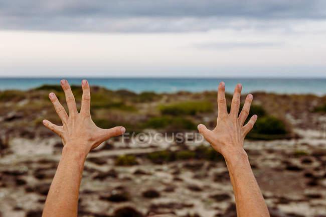 Persona che tende le mani durante la pratica di Tai Chi su sfondo sfocato della campagna — Foto stock