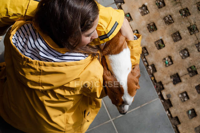 From above woman in yellow jacket hugging English Pointer dog — Stock Photo