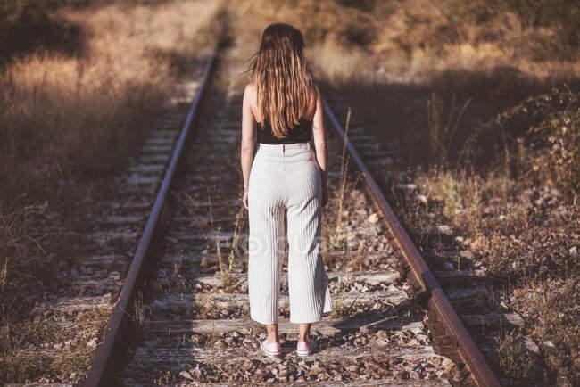 Задній вид стиглої жінки з довгим волоссям стоїть на залізничних зв'язках через поле сухих рослин. — стокове фото