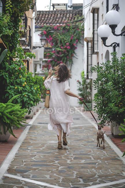 На задньому плані жінка у звичайному літньому вбранні з сумкою, що йде по вулиці Марбелла з італійським собакою Грейхаунд на попелі. — стокове фото