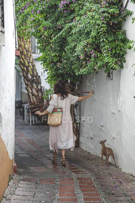 Visão traseira da mulher em vestido de verão casual com saco andando para baixo na rua Marbella com cão Greyhound italiano na trela — Fotografia de Stock