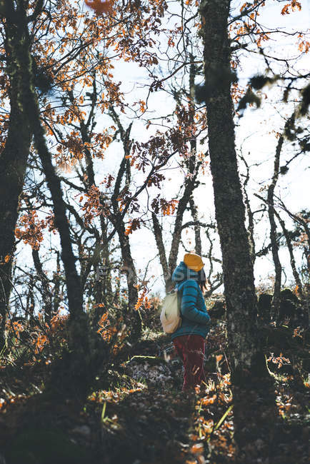 From below side view of unrecognizable female walking in autumn forest among trees — Stock Photo