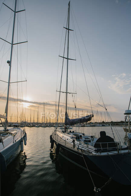 Exquisite yachts moored in calm water in bright day in Port Valencia, Spain — Stock Photo