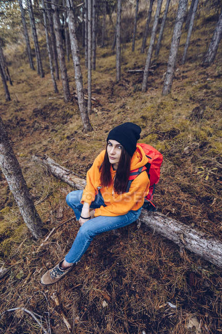 From above view of woman in warm clothes with backpack sitting on log and looking in camera in evergreen forest — Stock Photo