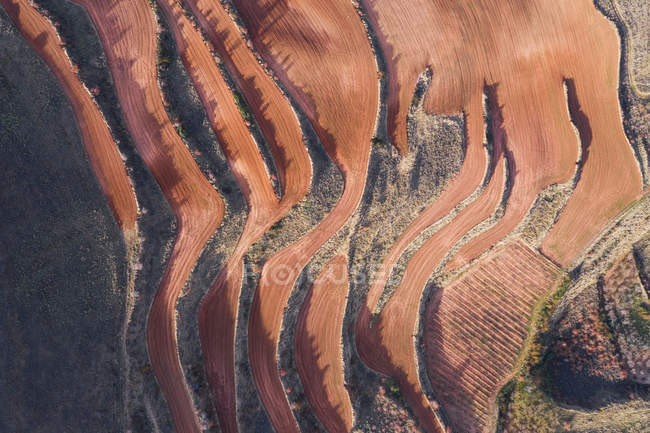 Aerial view of terraces landscape during dry season in Islallana, La rioja, Spain — Stock Photo