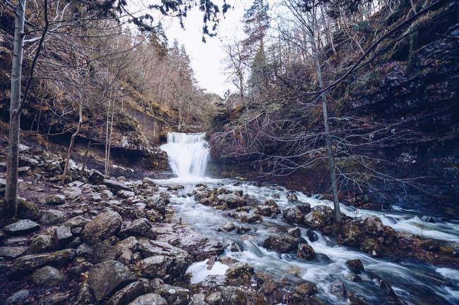 Быстрый поток с пеной, бегущей по скалистому склону голыми деревьями в мрачное время суток — стоковое фото