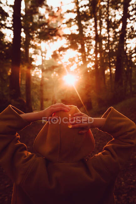Persona observando atardecer en bosque de otoño - foto de stock