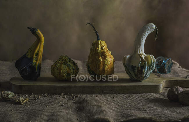 Small different pumpkins with condiments — Stock Photo