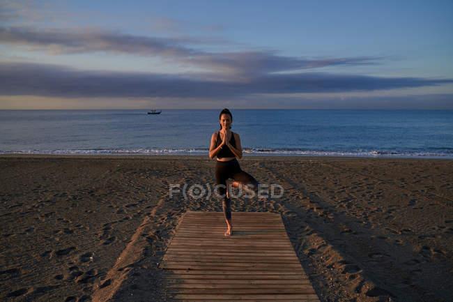 Feliz mujer delgada en el jersey deportivo de pie en el árbol posan en la playa arenosa cerca del mar agitado por la noche. - foto de stock