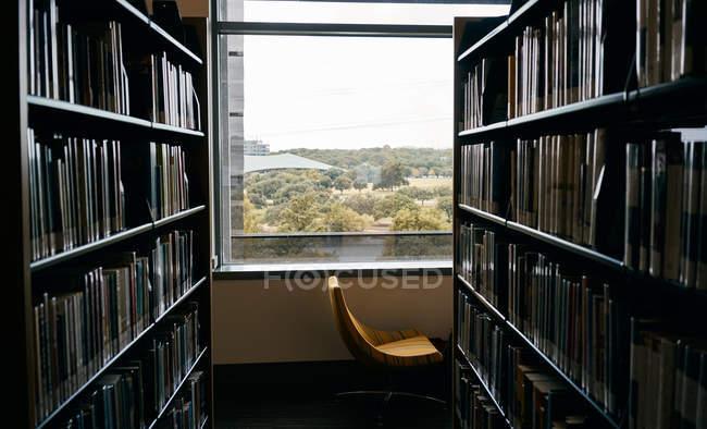 Étagères dans la chambre avec chaise confortable fenêtre à proximité dans la bibliothèque du Texas — Photo de stock