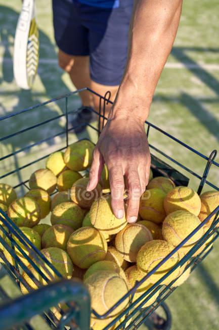 Imagem cortada de homem pegando bola amarela da cesta enquanto joga paddle tênis na quadra — Fotografia de Stock