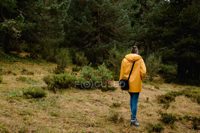 Back view of woman in yellow raincoat walking i forest — Stock Photo