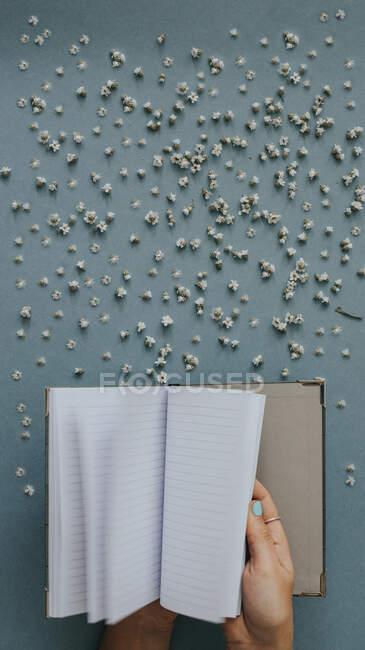 Сверху ясная записная книжка в руке человека на голубой поверхности с крошечными разбросанными цветами — стоковое фото