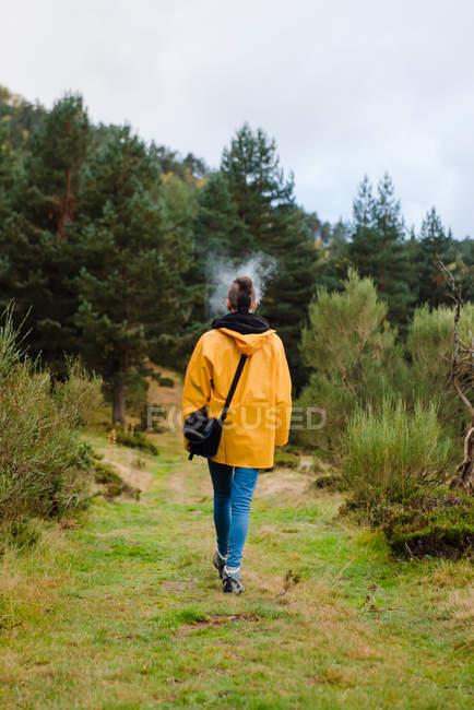 Позаду жінки в жовтому плащі, що ходить лісом і курінням. — стокове фото