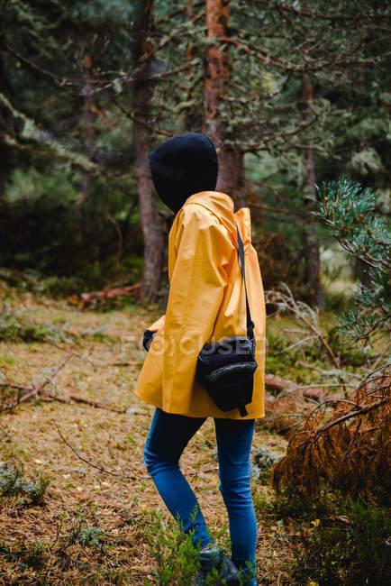 Vista laterale della donna in cappuccio nero e impermeabile giallo che cammina con la macchina fotografica in borsa nella pineta — Foto stock
