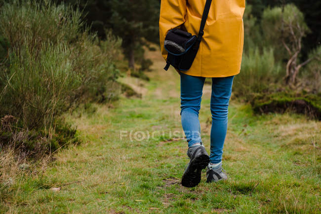 Cropped image of woman in yellow raincoat walking in forest — Stock Photo