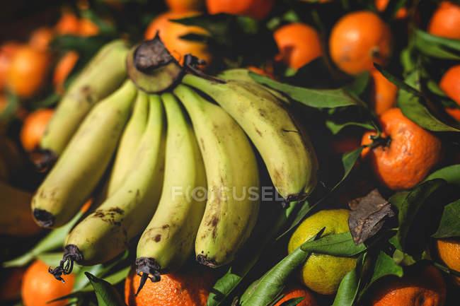 Fique cheio de laranjas orgânicas maduras e bananas no mercado externo dos agricultores — Fotografia de Stock