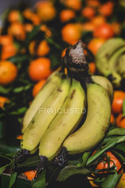 Поставайте повні стиглих органічних апельсинів і бананів на ринку фермерів. — стокове фото