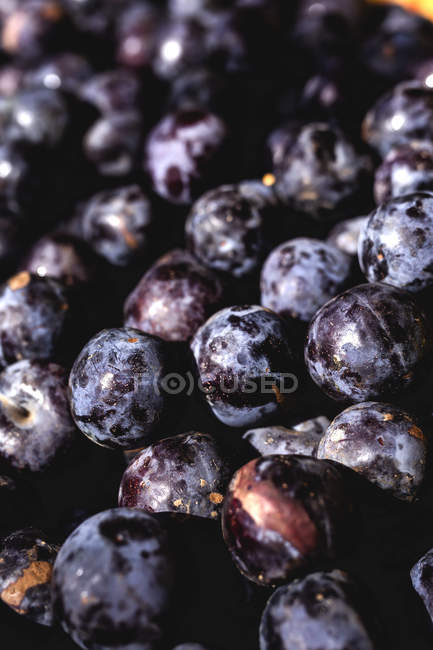 Stand full of ripe organic plums at farmers outdoor market — Stock Photo