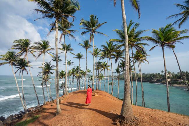 Tranquillo viaggiatore femminile tra le palme in riva al mare — Foto stock