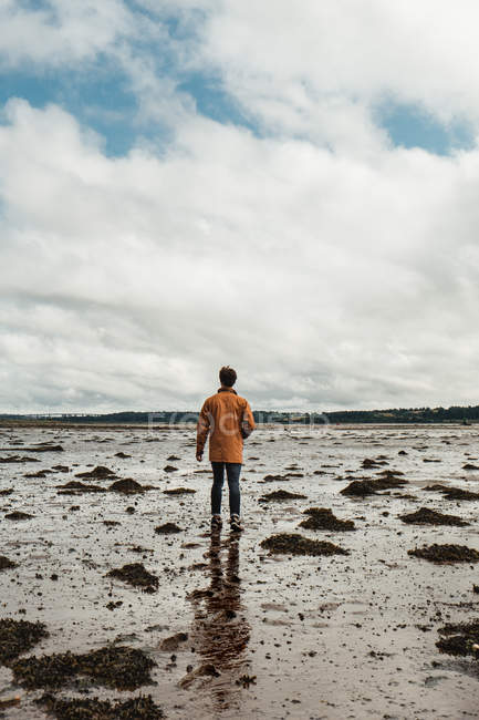 Back view of man walking along wet beach among marine algae against blurred horizon and cloudy sky in daytime in Scotland — Stock Photo