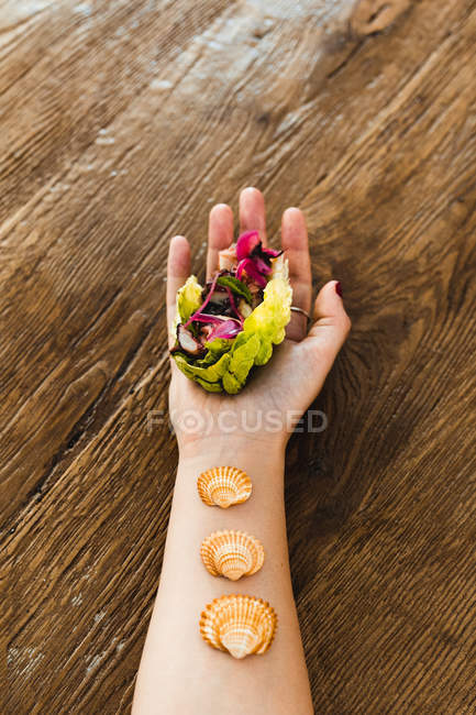 From above of hand of woman holding vegetarian rainbow lettuce wrap with seashells on wrist over wooden table — Stock Photo