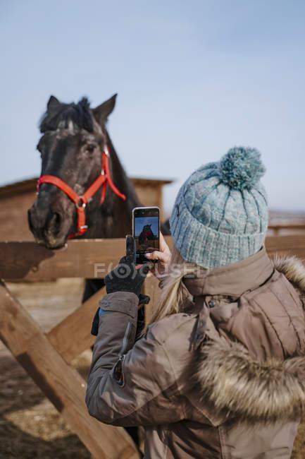 Visão traseira da mulher de roupas quentes no chapéu tirando foto de cavalo elegante escuro no freio vermelho no quintal na luz do dia brilhante — Fotografia de Stock