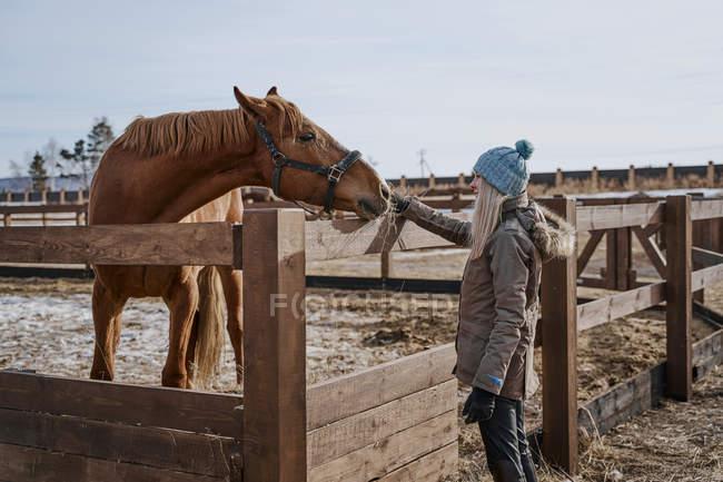 Vista laterale di cavallo di lusso in briglia e donna in cappello caldo e giacca alimentazione da fieno in cortile in pieno giorno — Foto stock