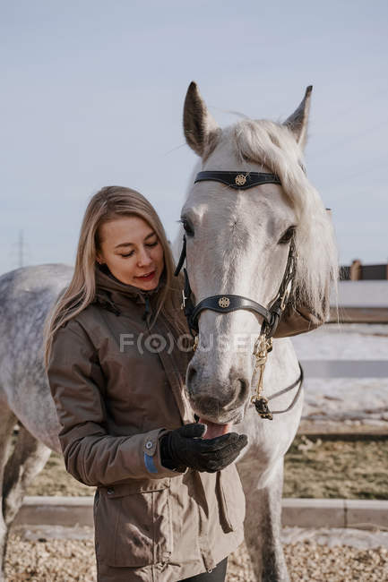 Dapple gray horse in snowy yard and woman in warm hat and jacket in bright cold daytime — Stock Photo