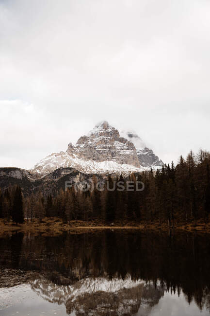 Big mountains near pine forest on cloudy weather — Stock Photo