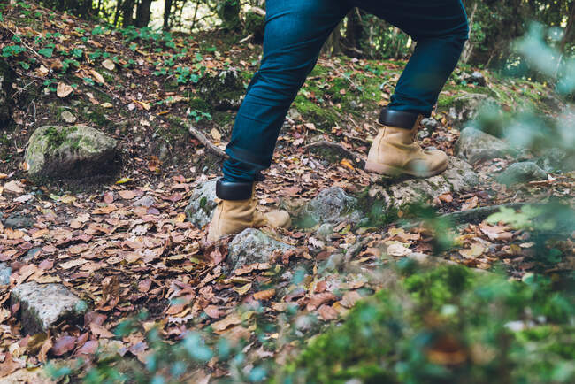 Crop legs in jeans and brown boots of hiker on rocky spangled of golden fallen leaves path with autumn forest on background — Stock Photo