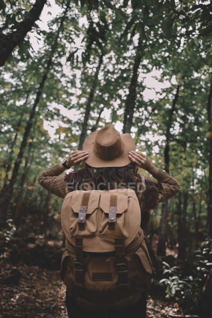 Back view of anonymous woman with backpack adjusting hat while traveling through green forest in nature — Fotografia de Stock