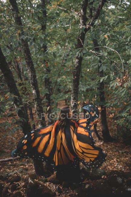 На задньому плані біля дерев у зеленому лісі танцює молода леді з крилами метелика. — стокове фото