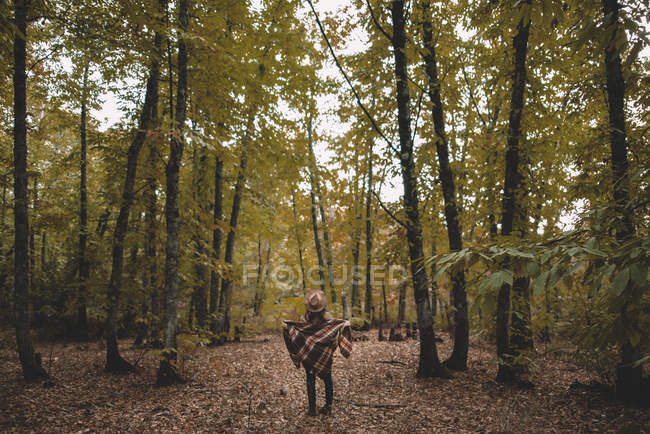 Back view of unrecognizable young woman in hat wrapping in checkered scarf while standing on dry leaves in autumn forest — Stockfoto