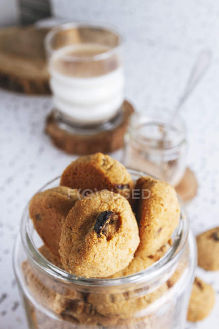 Composition of organic homemade cookies with jar of cacao powder and glass of tasty milk — Stock Photo