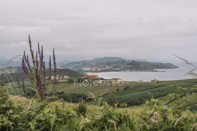 Colorful flowers and plants on green empty meadow with endless fields and small village on background on cloudy weather at Comillas Cantabria at Spain — Stock Photo