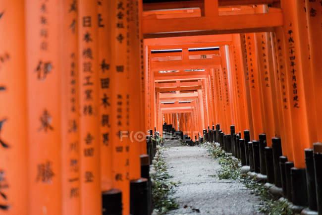 Marco intrigante com portões vermelhos ocupados de símbolos kanji japoneses no caminho rochoso no templo Fushimi Inari em Kyoto, Japão — Fotografia de Stock
