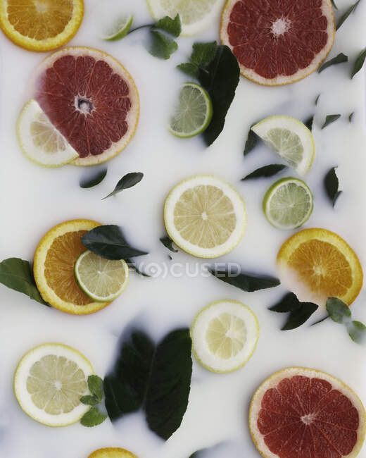 Fresh rounds of citrus fruits in milk — Stock Photo