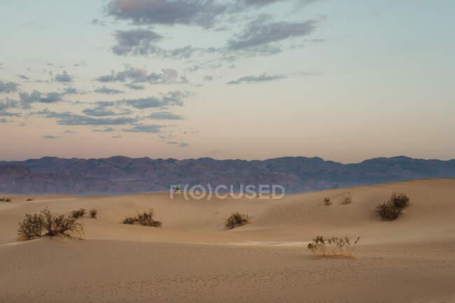 Deserto in dune sabbiose asciutte nella Valle della Morte USA — Foto stock