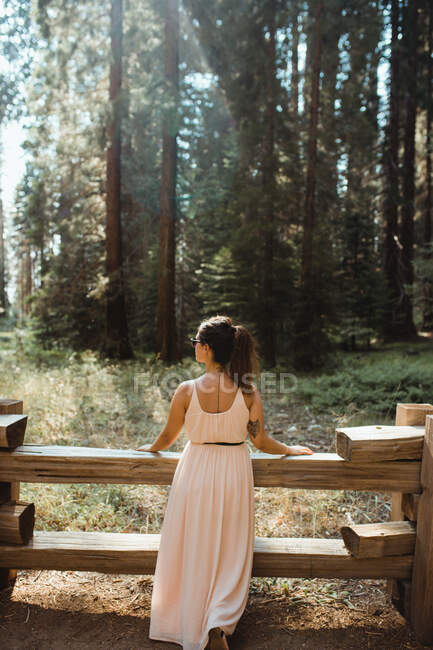 Enthusiastic woman leaning on fence and enjoying high trees — Stock Photo